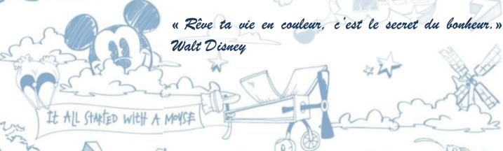 Rêve couleurs Disney