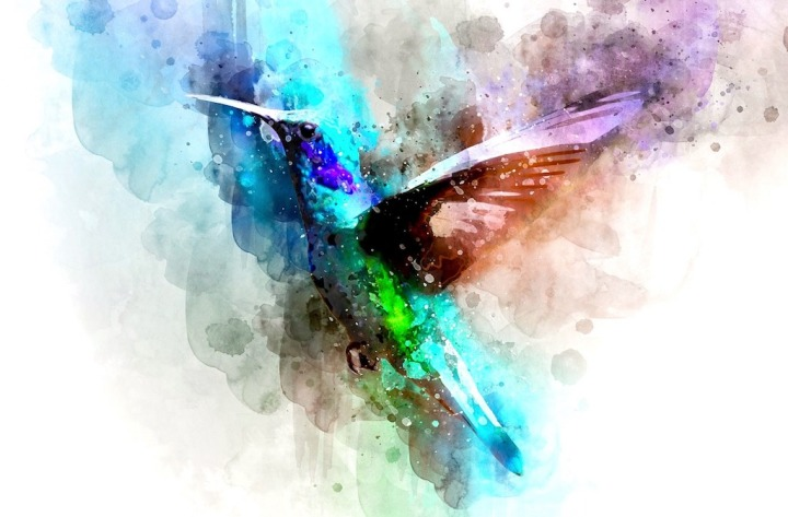 Art thérapie oiseau