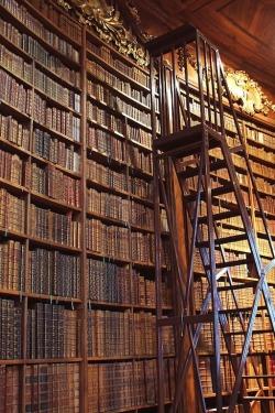 Bibliothèque Vienne livres