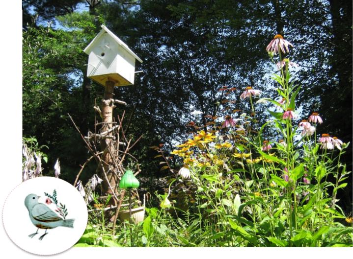 Maison pour oiseau printemps