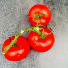 Les tomates en grappe