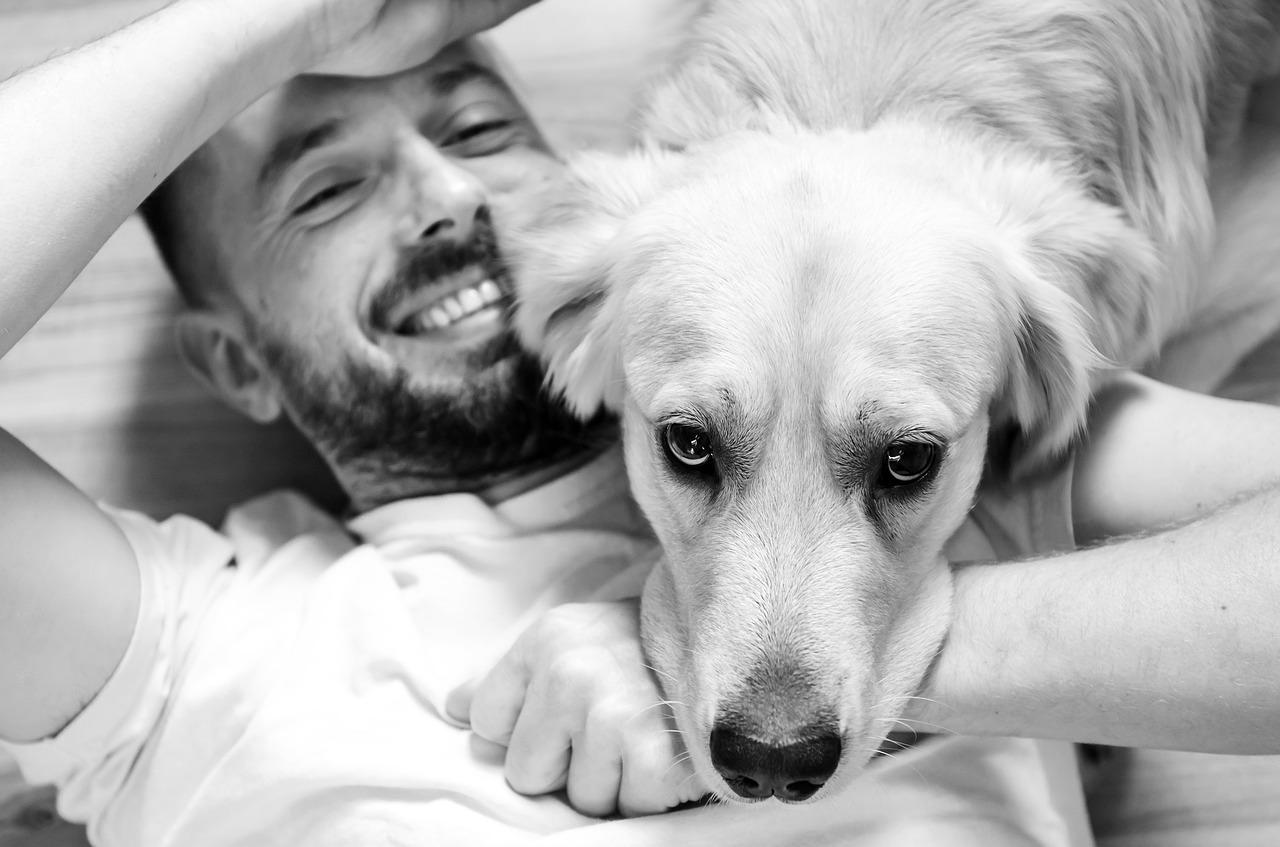 8 raisons pour lesquelles avoir un chien améliore notre bien-être