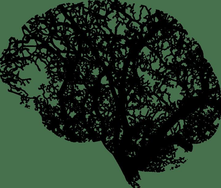 Comment garder un cerveaujeune?