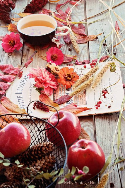 automne pommes de pin déco