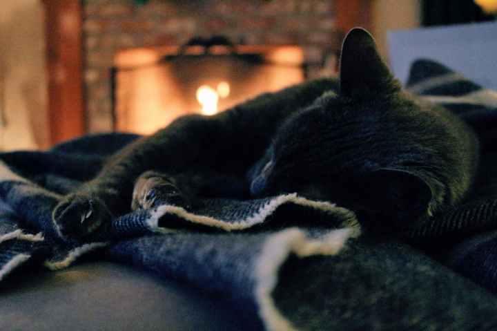 feu de cheminée automne
