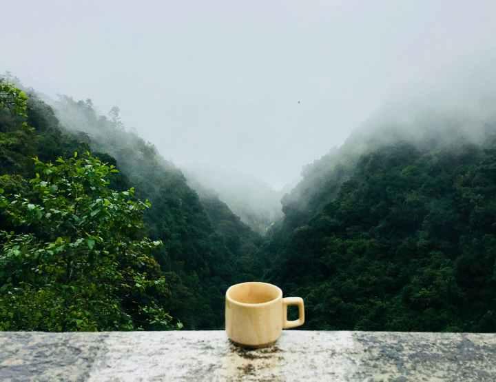 Boire du thé bien etre Mon Totem
