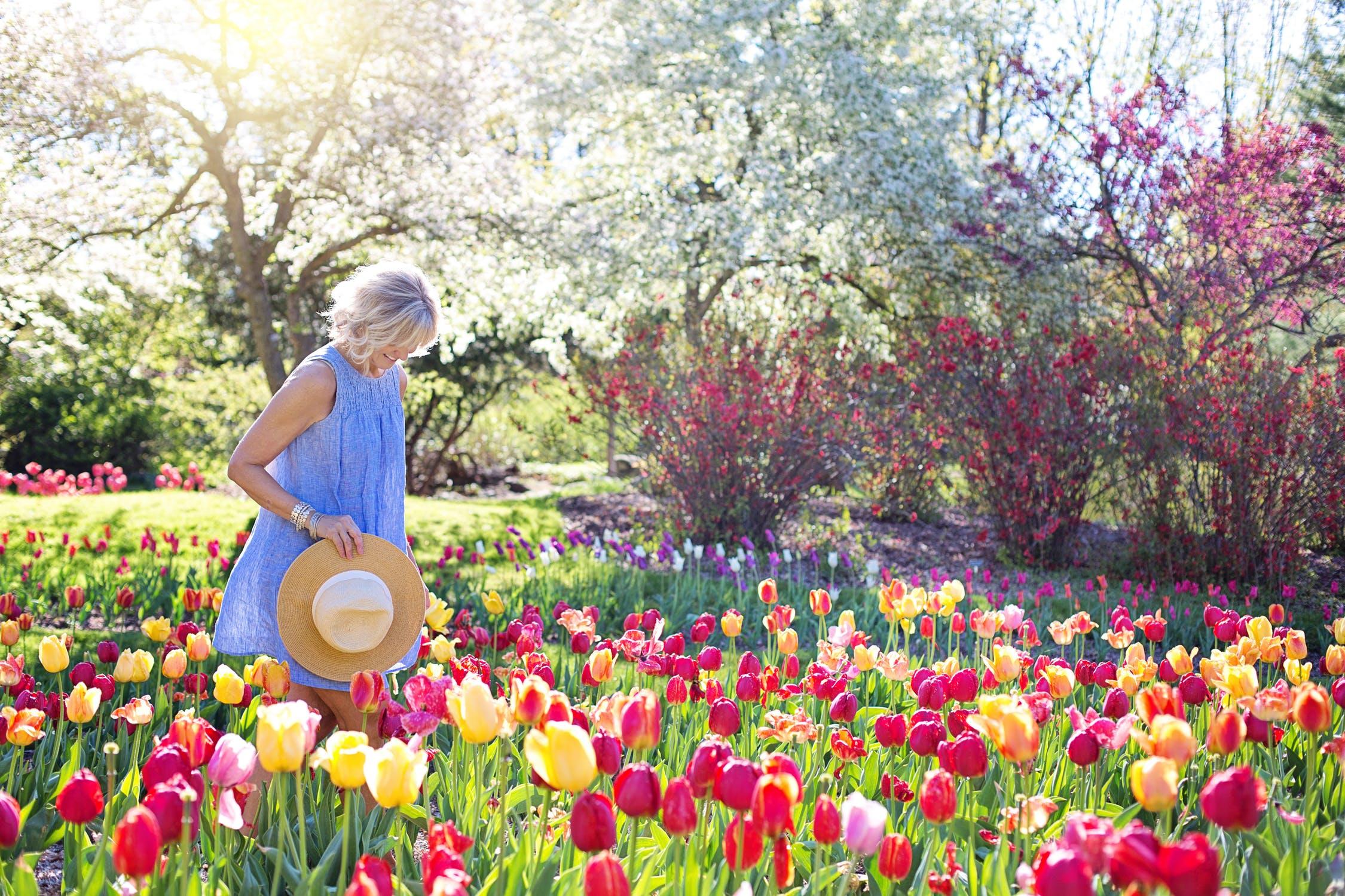 Fleurs de printemps: comment créer un beau jardin