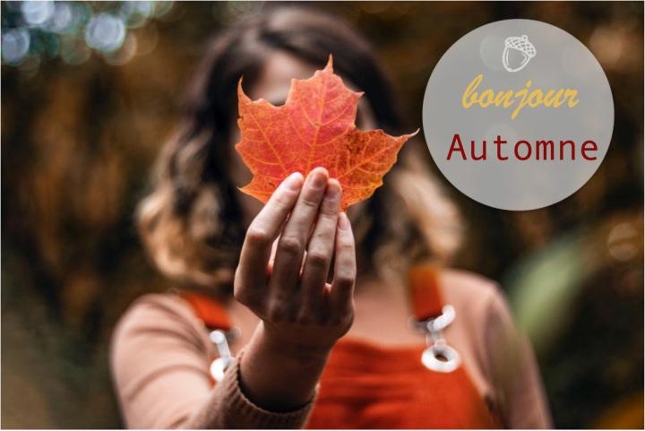 Faites de l'automne la plus belle dessaisons